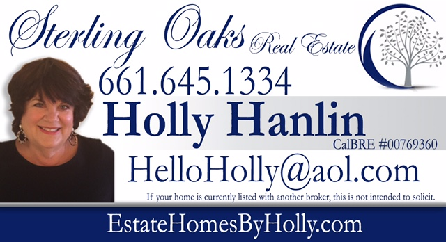 Holly Hanlin-Real Estate Professional