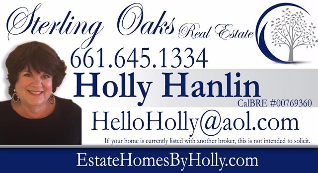 Holly Hanlin-Real Estate Professional